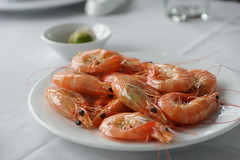 shrimp, dendrobranchiata, caridean shrimp, crustacean, fish, seafood, invertebrate, food, scampi, dish, cuisine,