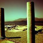 Nora - columns landscape