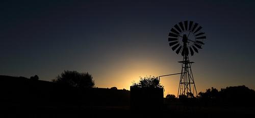 windless sunset