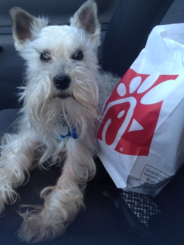 105 - Our Weekly Chick-fil-a trip