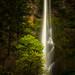 Multnomah Falls by LukeDetwiler