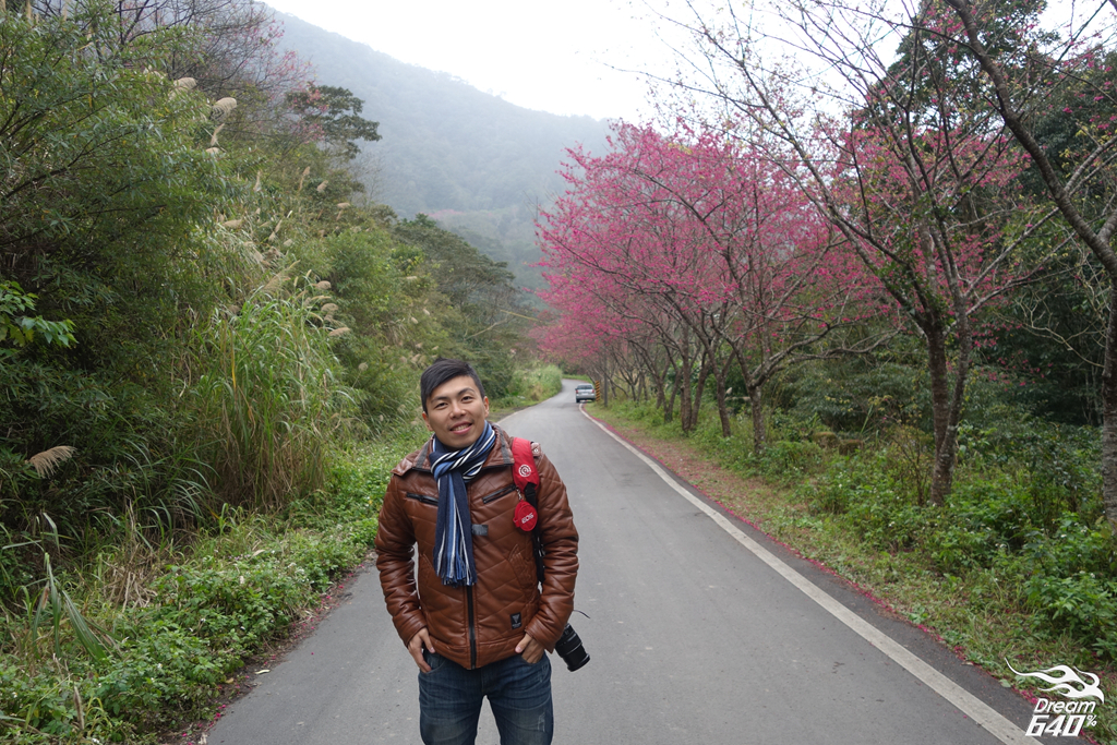 2015賞櫻-烏來福山60
