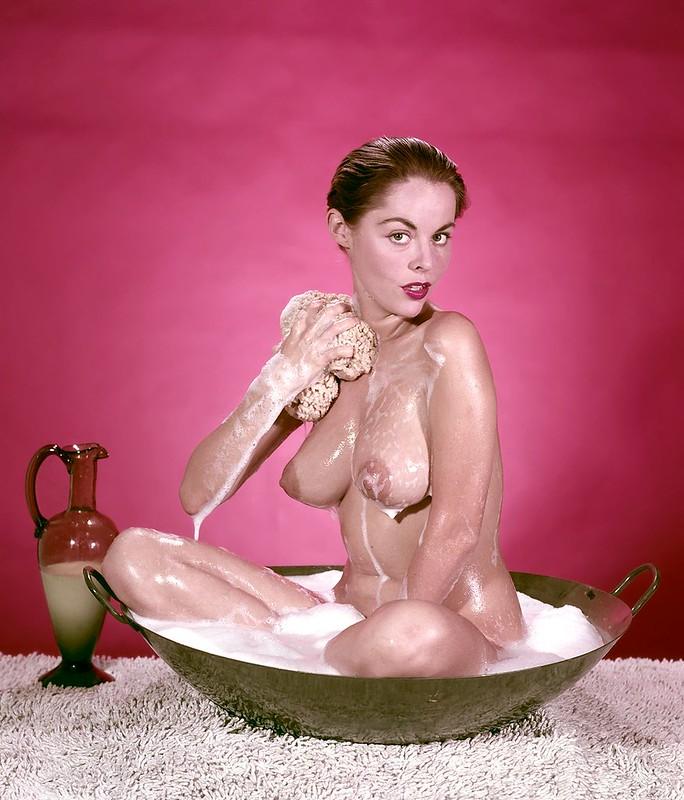 Diane webber vintage porn something