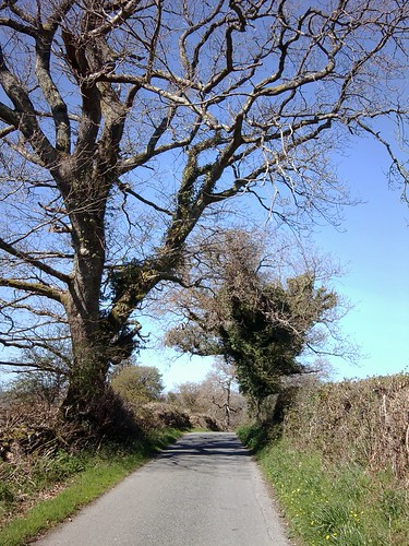 A walk on a sunny day by Helen in Wales