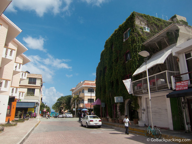 My ivy-covered hotel, the Delfin, was just a block from the beach in the heart of Playa