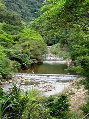 缺乏治水治理思維,台灣仍有多個大壩式水庫興建案。圖為雙溪水庫預定地丁子蘭溪。