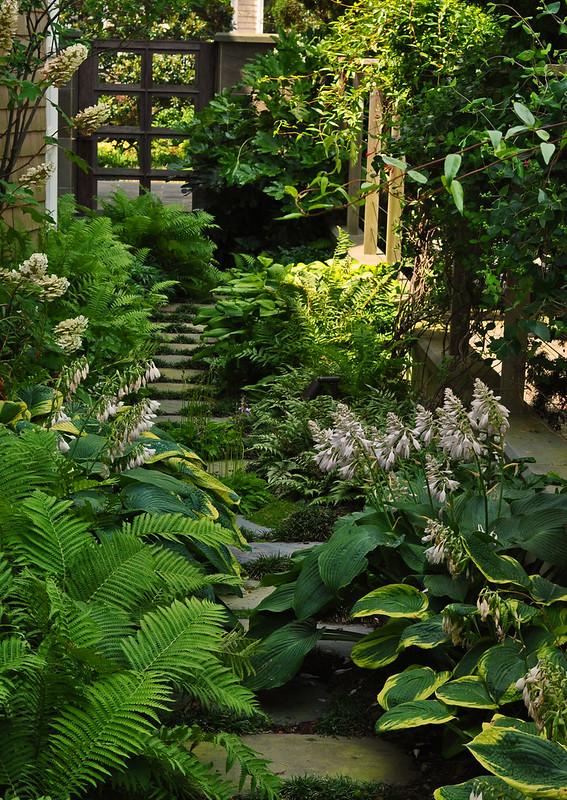 Goodman Garden (27)