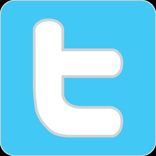 twitter_logo_detail