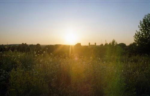 sunset slr nature field forest poland polska 35mmfilm analogphotography singlelensreflex czestochowa częstochowa simstorm