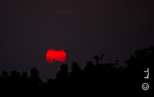 light sunset red sun canon dark evening swarnjayantipark