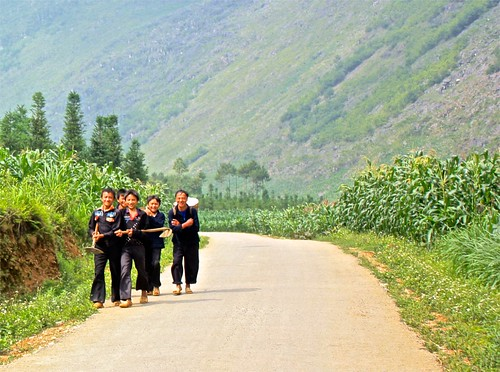 Black Hmong men on their way to the fields