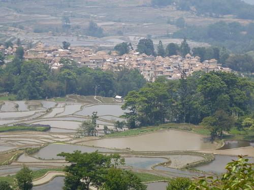 Yunnan13-Yuanyang 16-Qingkou (22)