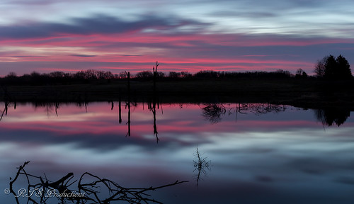 wood longexposure trees winter sky nature water field leaves clouds canon landscape outdoors morninglight pond cloudy january overcast 7d orangesky cloudysky buschwildlife canon7d canon1585mmlens