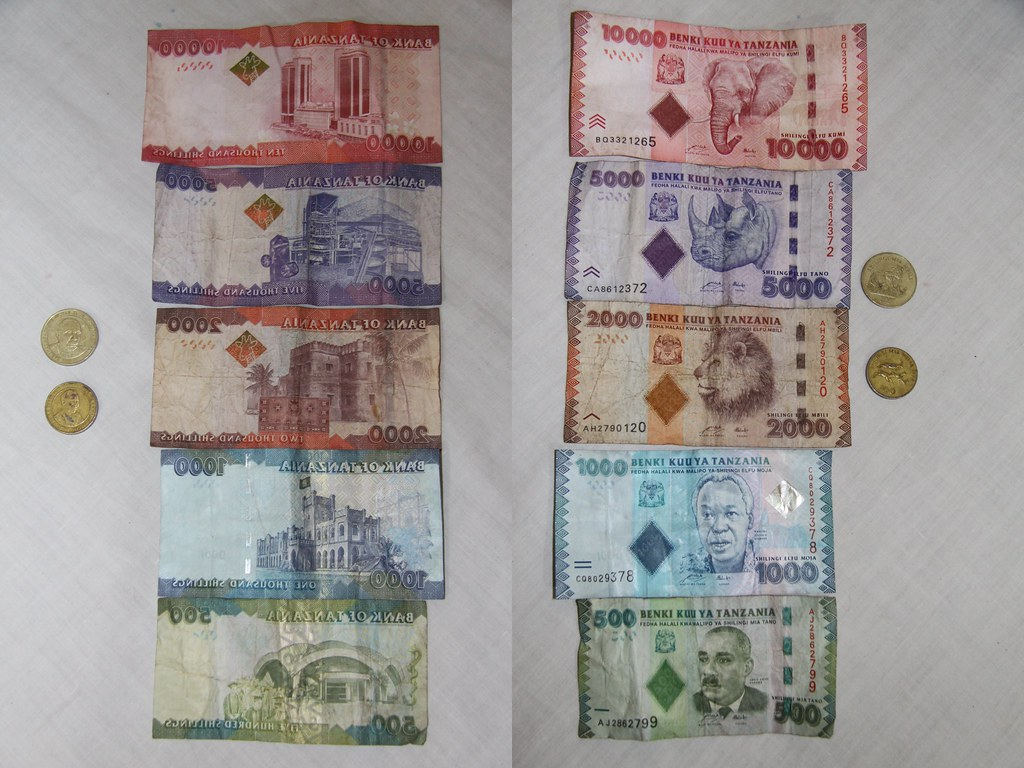 Tanzanian Money
