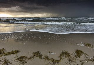FV Flickr Top 5 Eervolle Vermelding: Stormy Monday