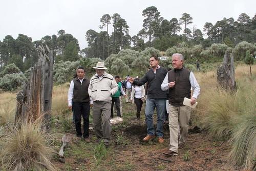 : supervisa semarnart trabajos de reforestación en nevado de Toluca