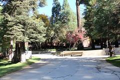 Quilt Retreat Fall 2013-123