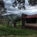 En la vieja cabaña por CCalaflo