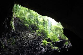 Deer Cave - Garden of Eden