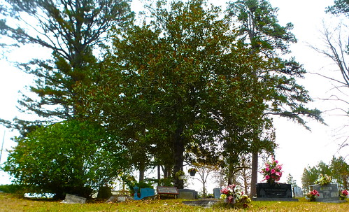 Lead Belly's grave site, Shiloh Baptist Church, Mooringsport