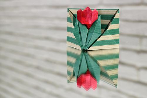 Origami Tulip corner case (Ayako Kawate)