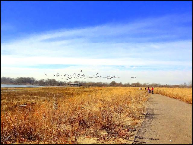Marine Park, Brooklyn