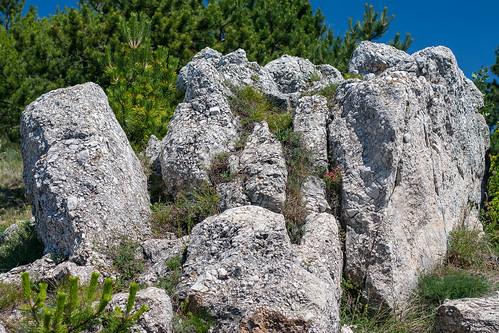 Trip to Farkas-hill