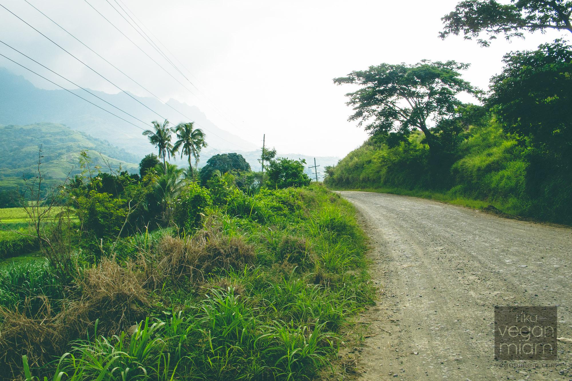 Nadi Fiji