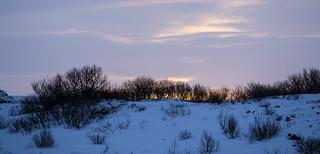 Lögberg sunrise 438 (102)