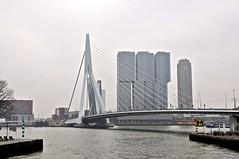 Skyline Rotterdam Zuid