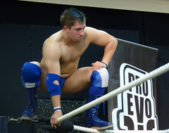 Pro Evolution Wrestling