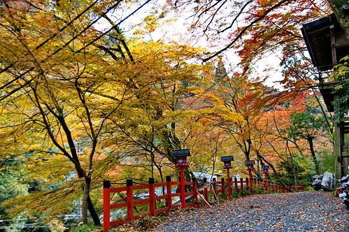 【写真】2012 紅葉 : 貴船神社/2019-02-06/IMGP5942