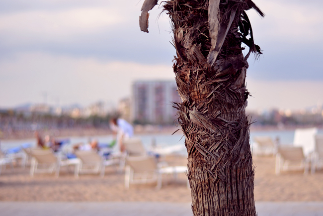 W Barcelona Salt Beach Club CATS & DOGS fashion blog 6