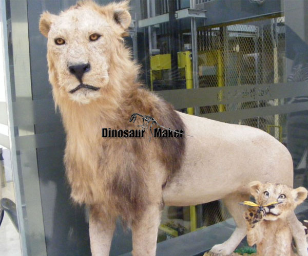 Animatronic Lion for Sale