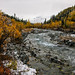 Small photo of Trail Creek Trail- Trail Creek in Fall