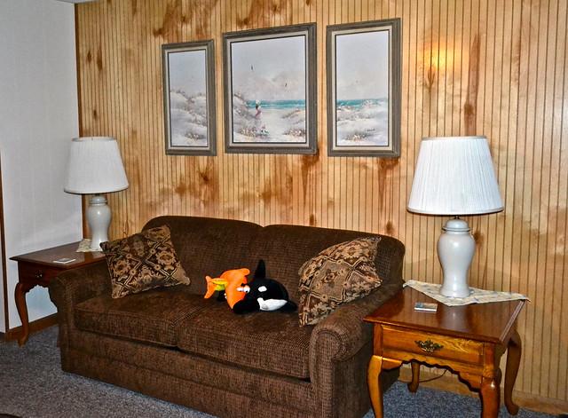 sleeping area at kings bay lodge crystal river florida