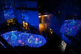 Merry Christmas 2013-2