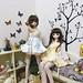 玩具2 - 春櫻&山茶