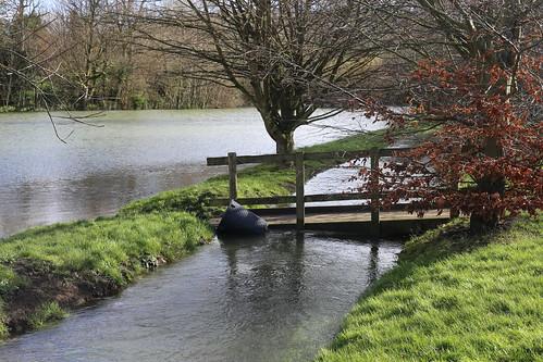 The Drellingore floweth over, Alkham, Kent
