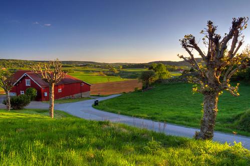 road rural göteborg countryside sweden gothenburg fields sverige bergum västragötaland canonefs1785mmf456isusm canoneos7d