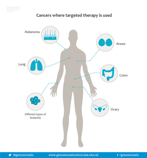 Cancers and targeted treatment