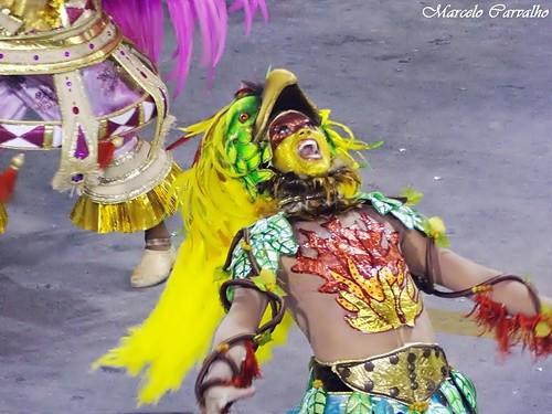 Salgueiro_Carnaval 2014_Rio de Janeiro