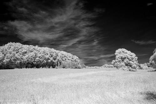 Sky-Infrared.jpg
