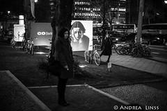 C/O Berlin...Opening
