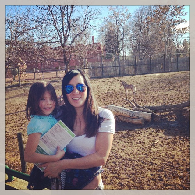 It's a beautiful day to be at the zoo! #DenverZoo #zebras #giraffes #meandmybaby