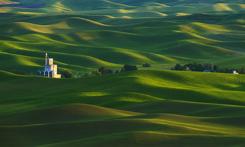 Palouse Colors (Steptoe, WA)