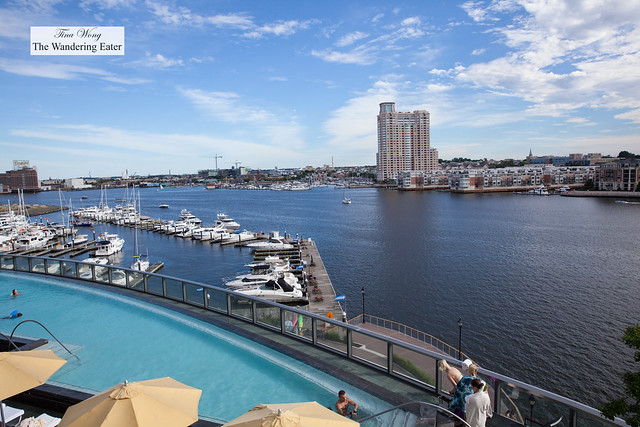 View of the rooftop infinity pool area and Harbor East
