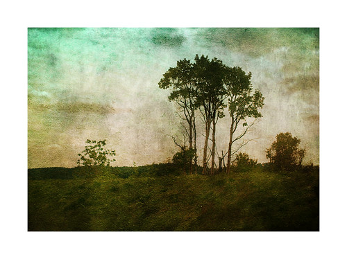 texture landscape ytree