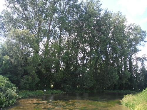 From River Test Bridge, Houghton