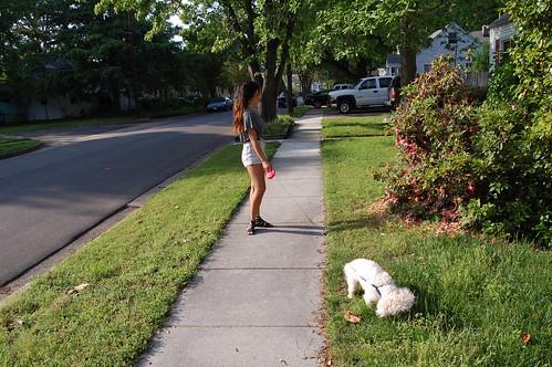 Walking the Dog (4)(May 10 2013)